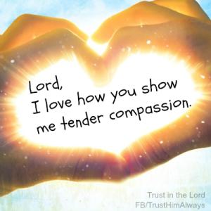 U Show Me Tender Compassion 198 DPI