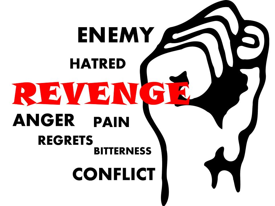 revenge-492560_960_720