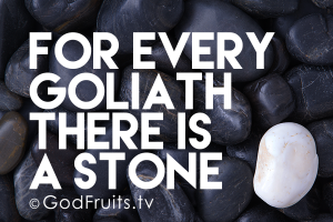 *Stone for Goliath