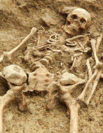 140918131138-leicester-skeletons-1-horizontal-large-galleray (2).jpg