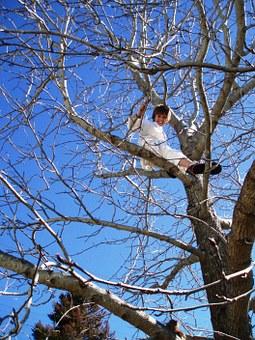 tree-climbing-765143__340